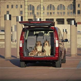 perros-coche hd 42637 red
