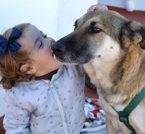 Niña acariciando a un perro que busca hogar