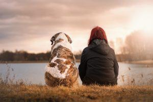 Un perro y una chica